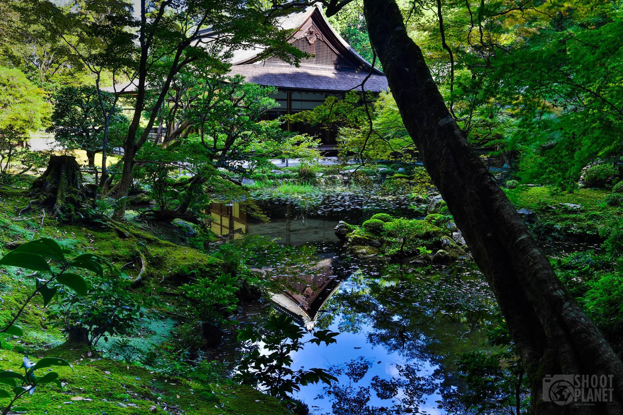 Traditional Japanese house poud reflection in Kyoto