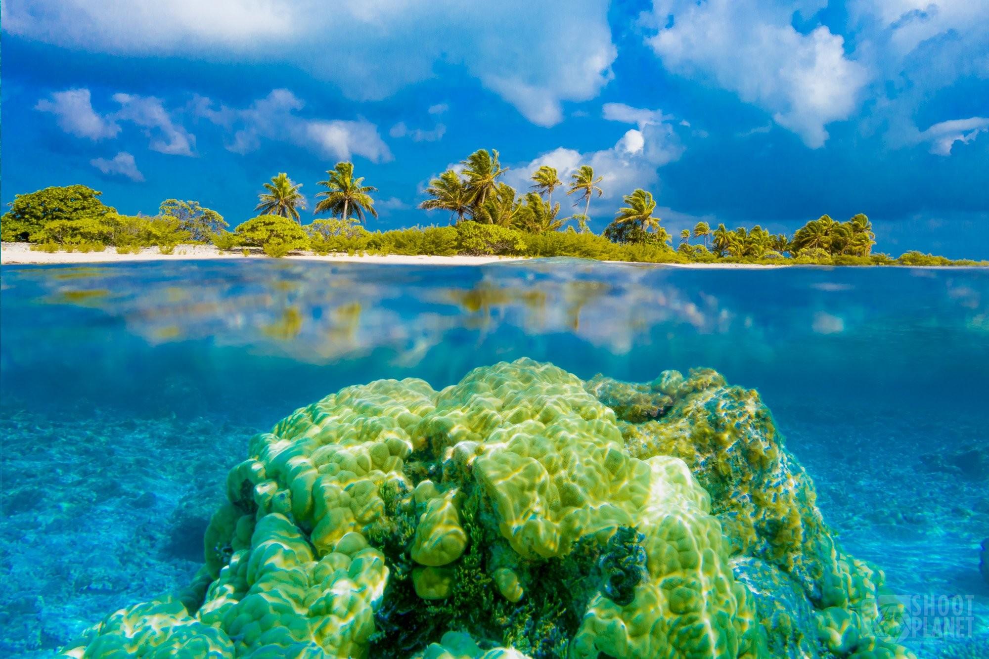 Rangiroa atoll over and under sea Polynesia