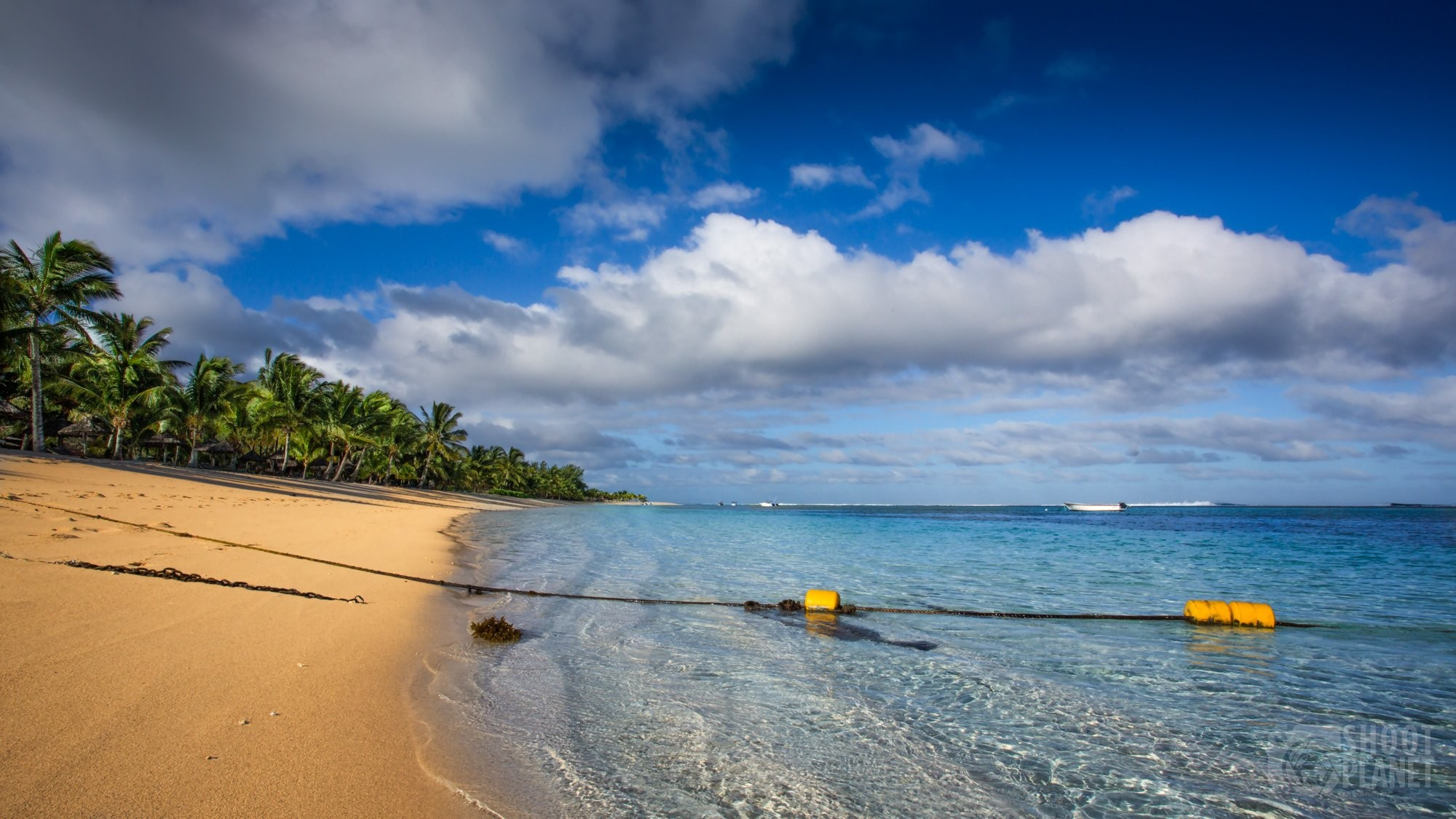 Golden sand beach and coconut trees, Mauritius