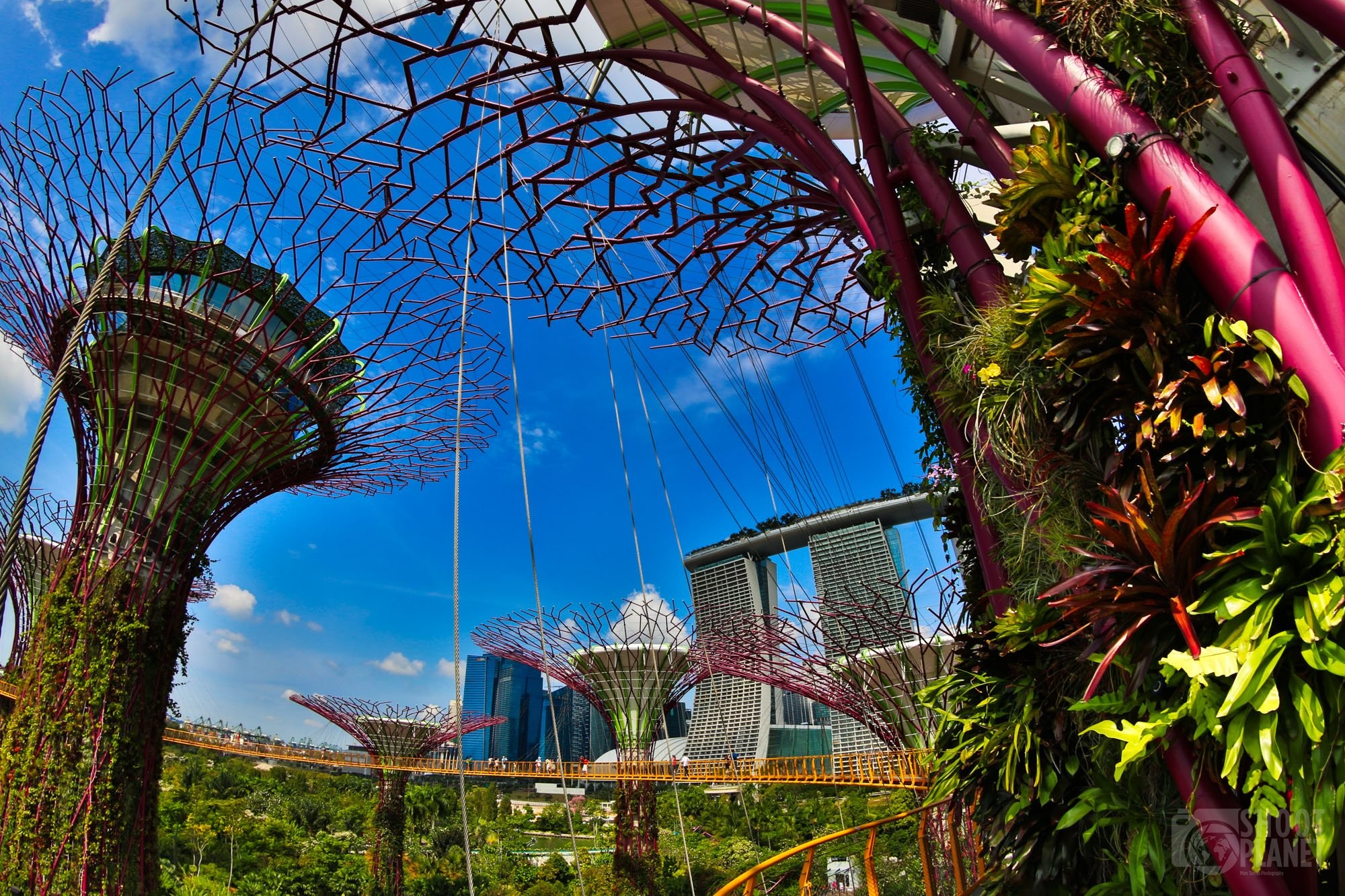 Gardens by the Bay fisheye, Singapore
