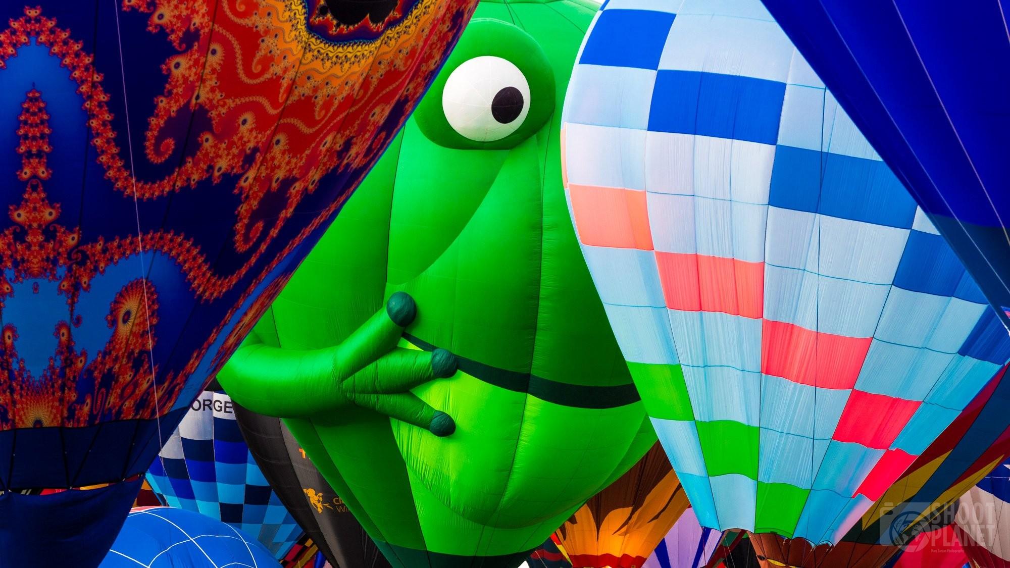 Air balloon frog close-up, Albuquerque USA