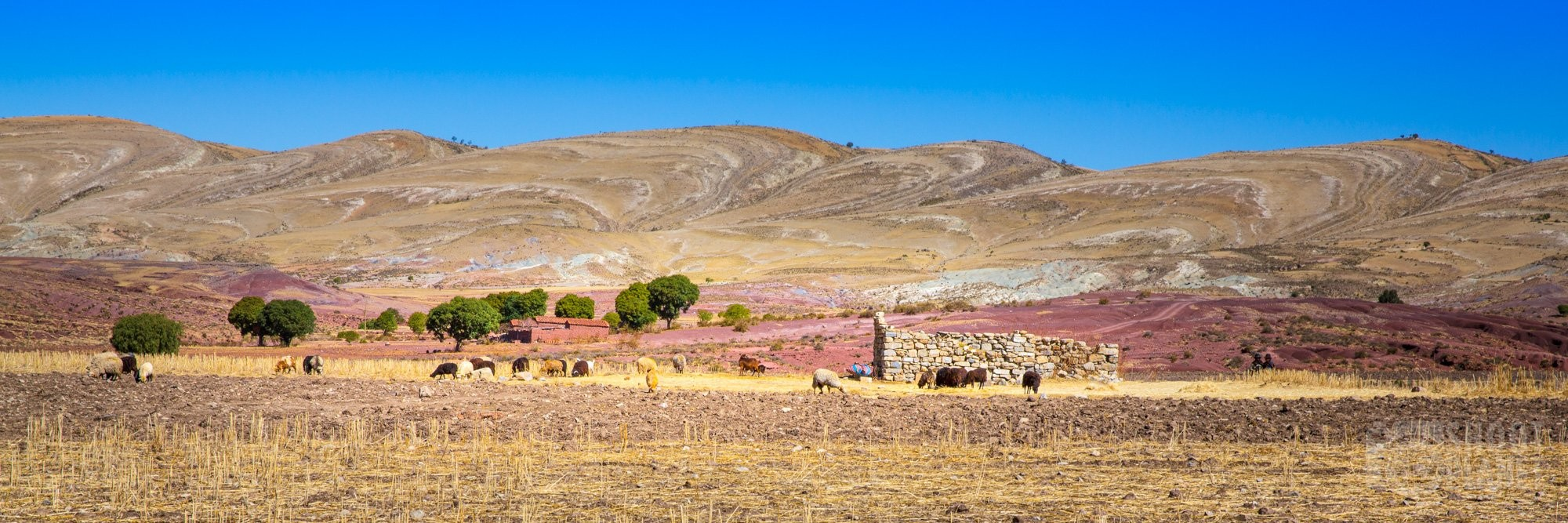 Jalq'a communities' farm panorama, Maragua, Bolivi