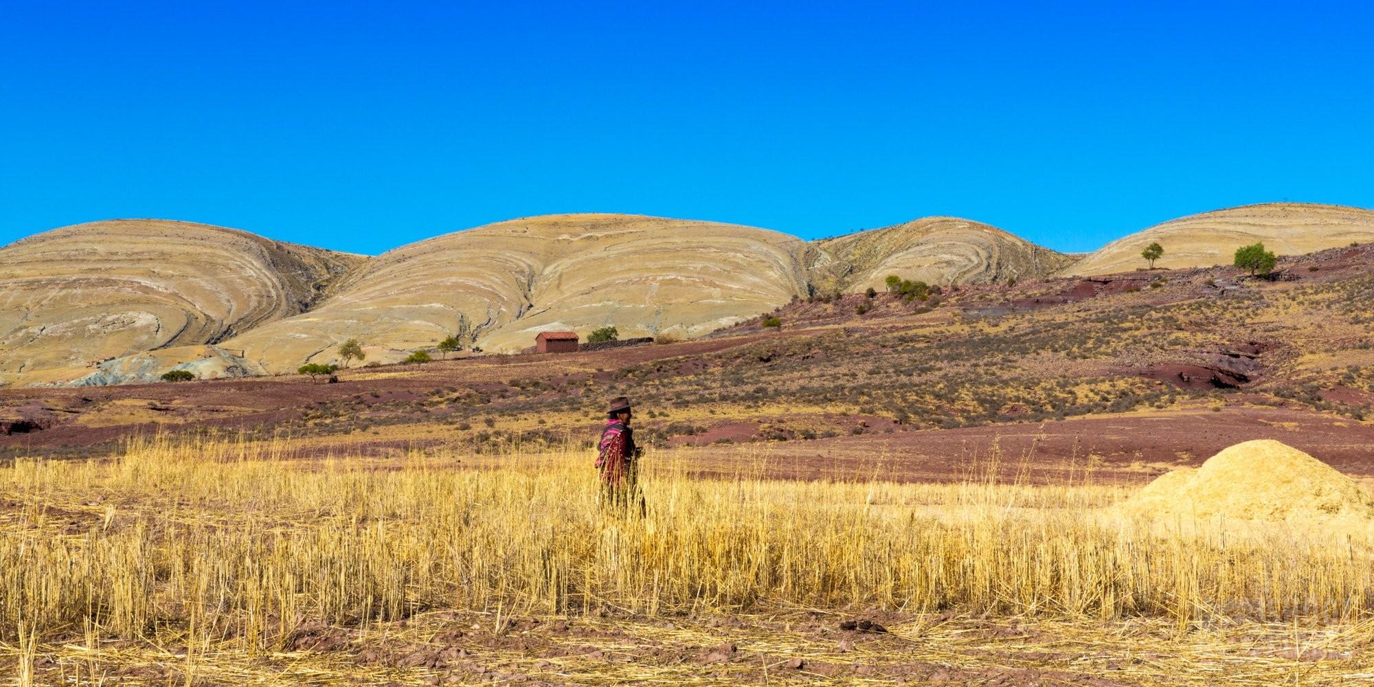Jalq'a farmer with painted rocks, Maragua, Bolivia
