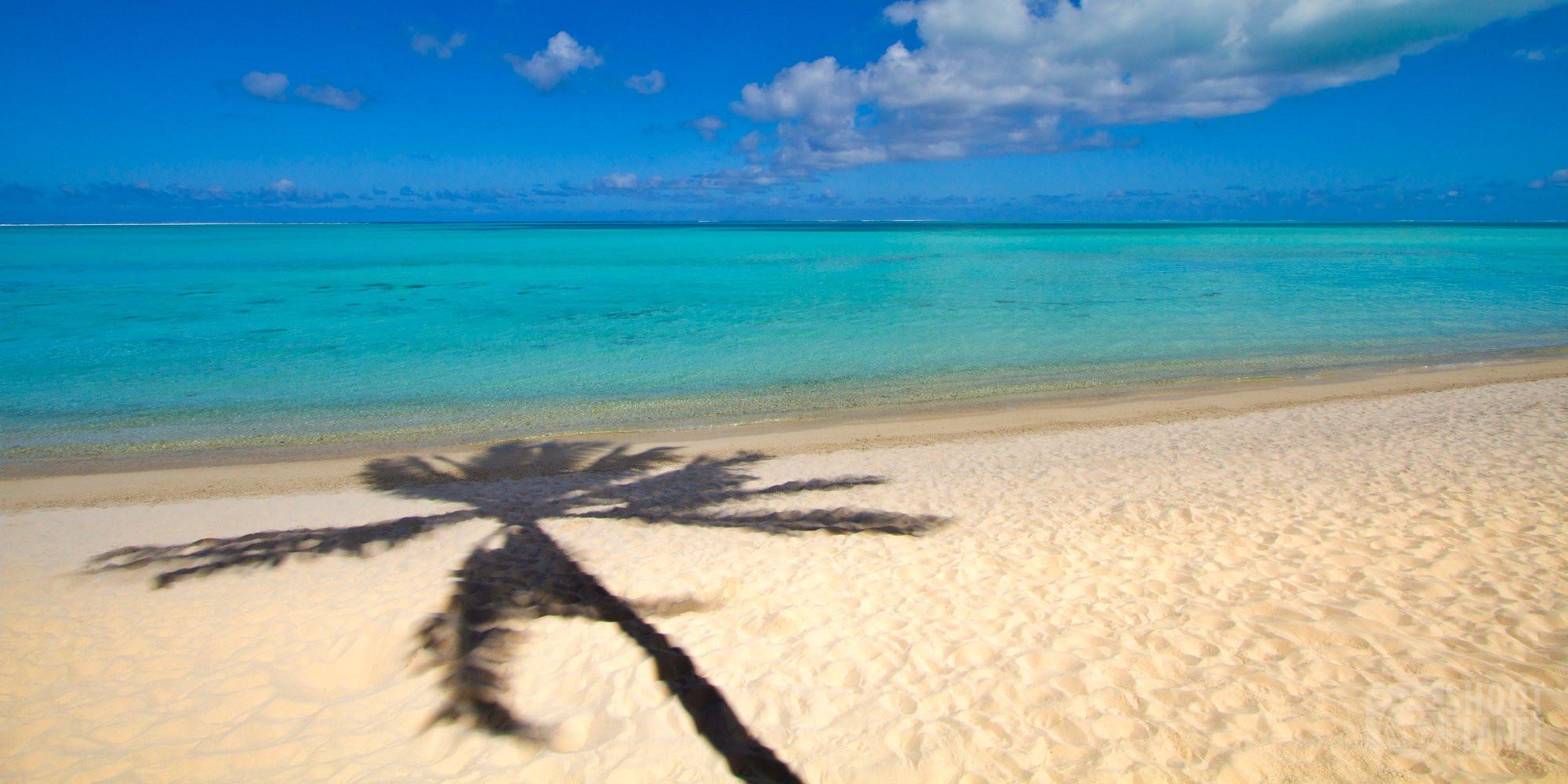 Palm tree shadow on a Bora Bora beach