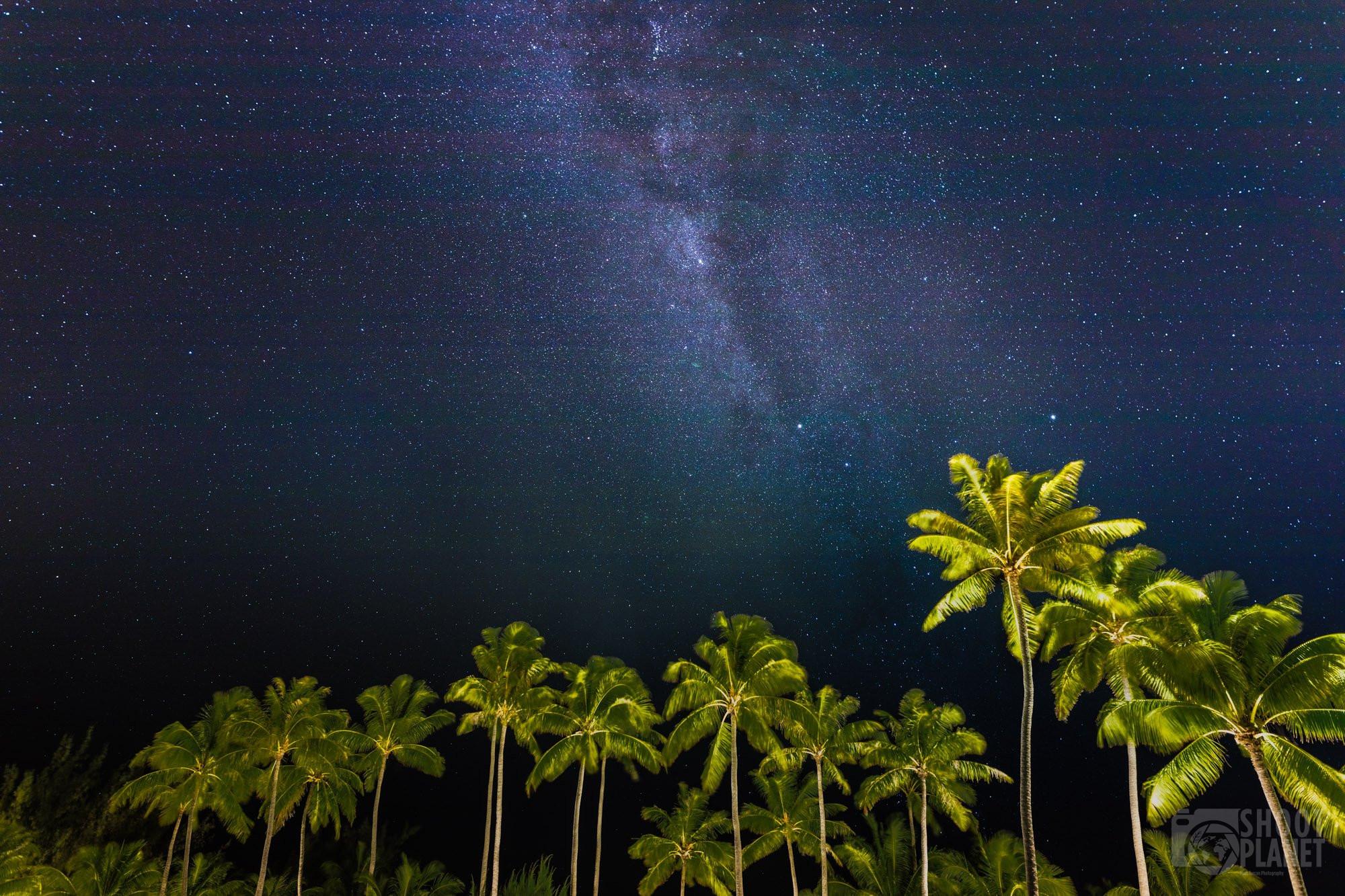Milky Way above palm trees, Bora-Bora
