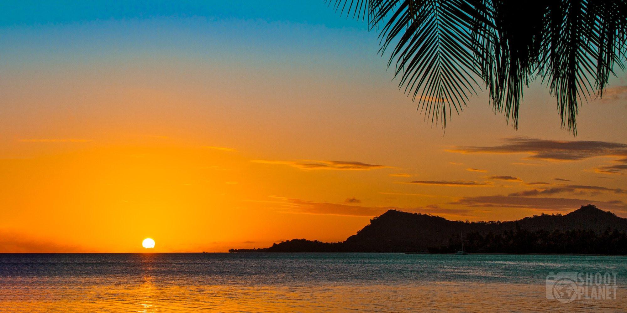 Bora Bora island and palm tree sunset