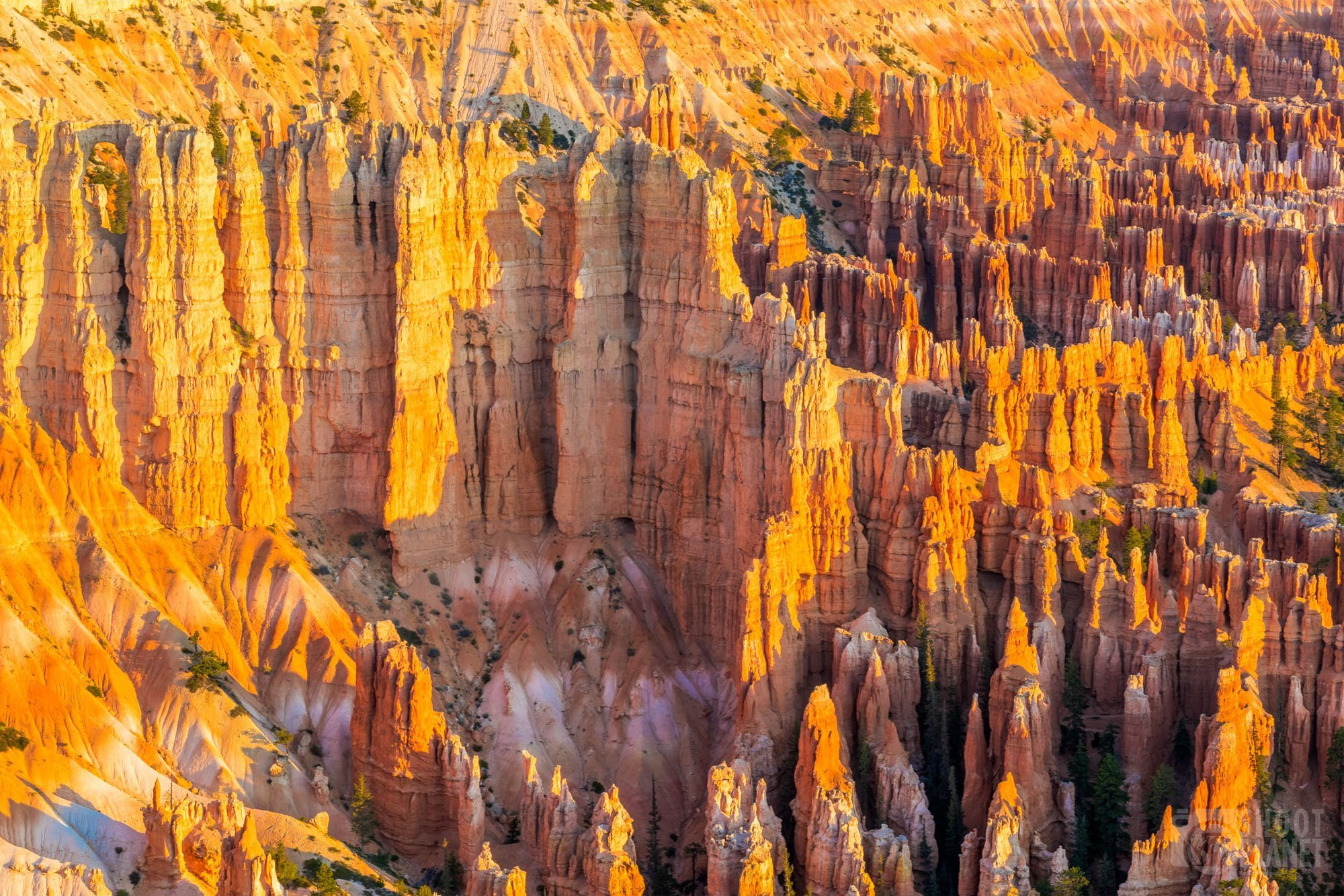 Bryce Canyon National Park rock sunrise, USA