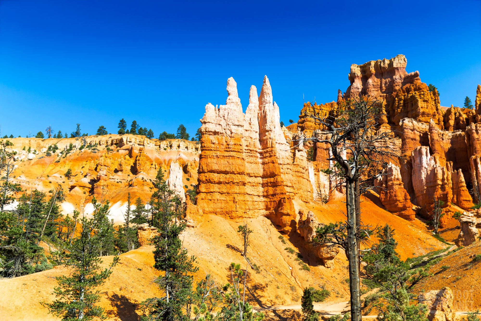Queens Garden trail, Bryce Canyon, USA