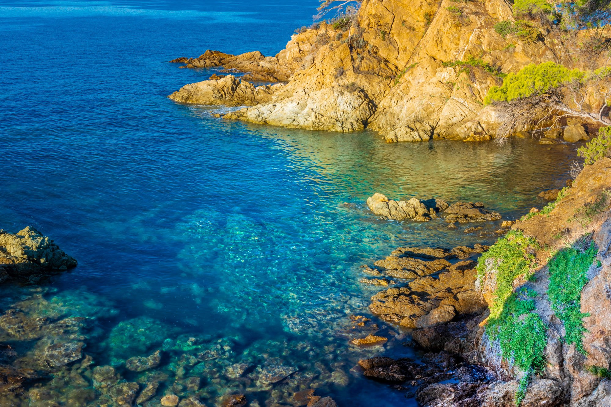 Turquoise sea on the Golden Islands , France