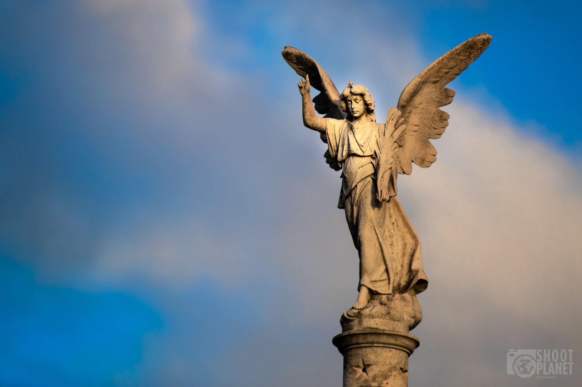 Recoleta Cemetery angel statue, Buenos Aires, Argentina
