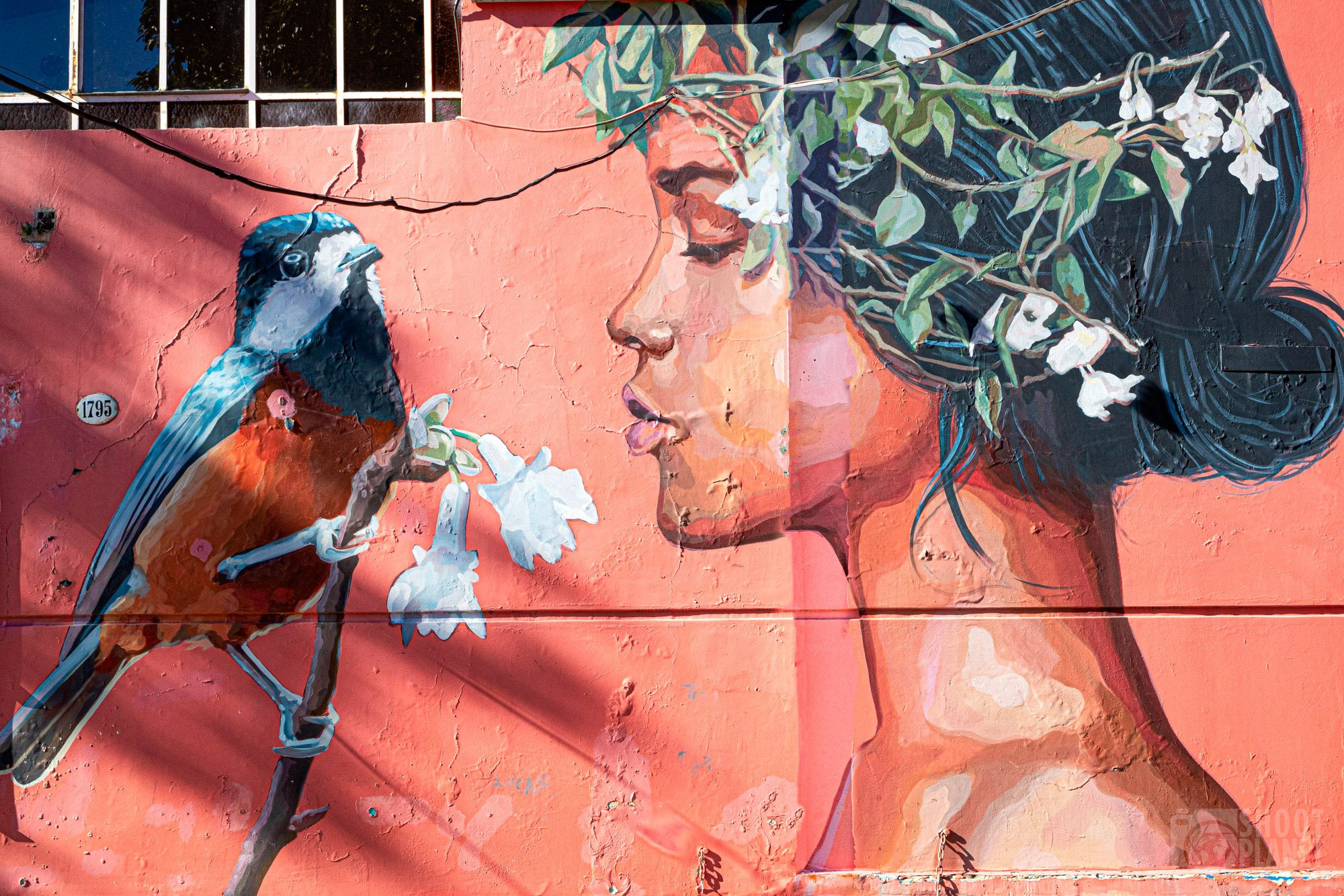 Street art woman, Buenos Aires Argentina