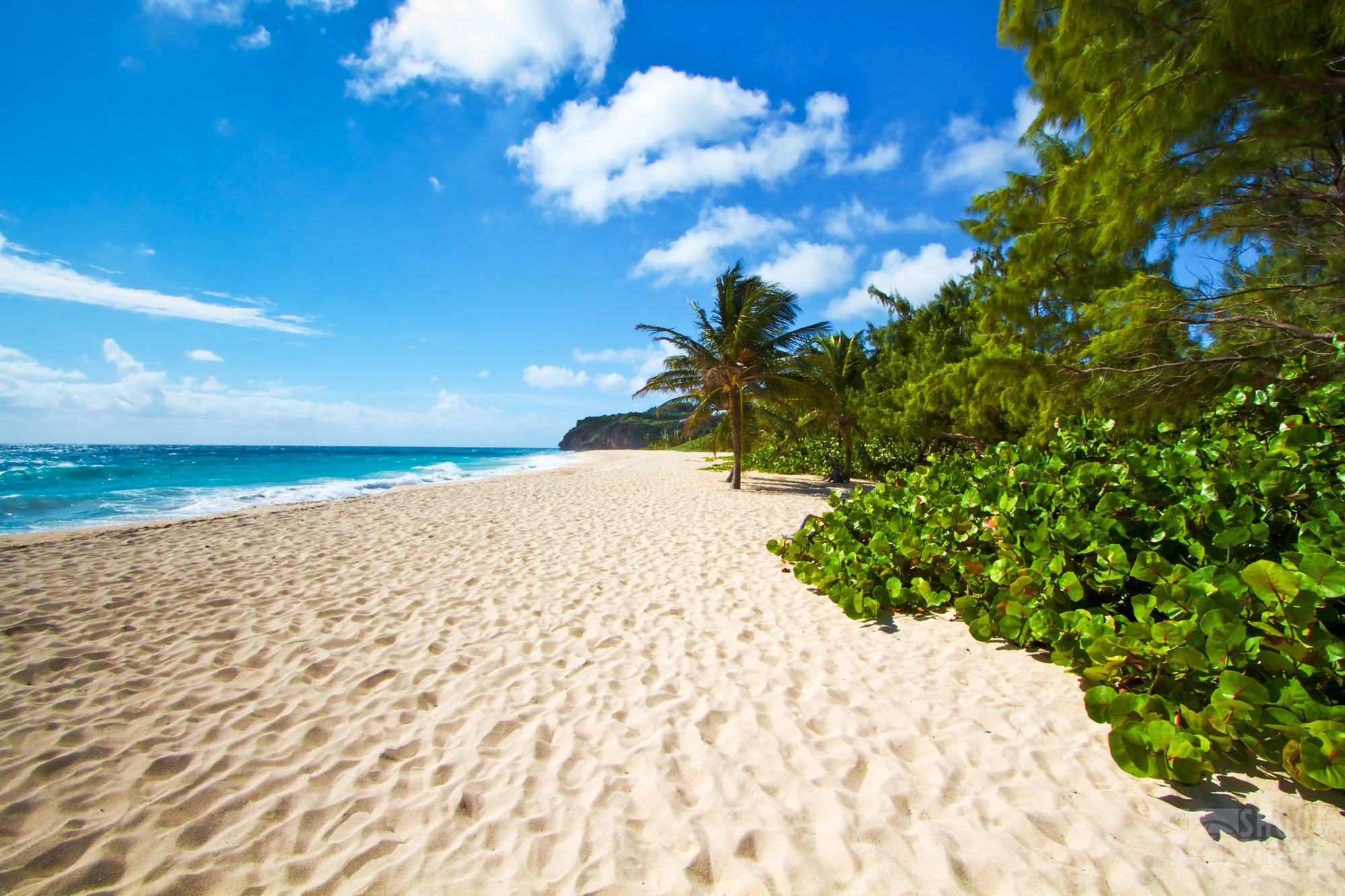 Miami beach in Barbados caribbean Island