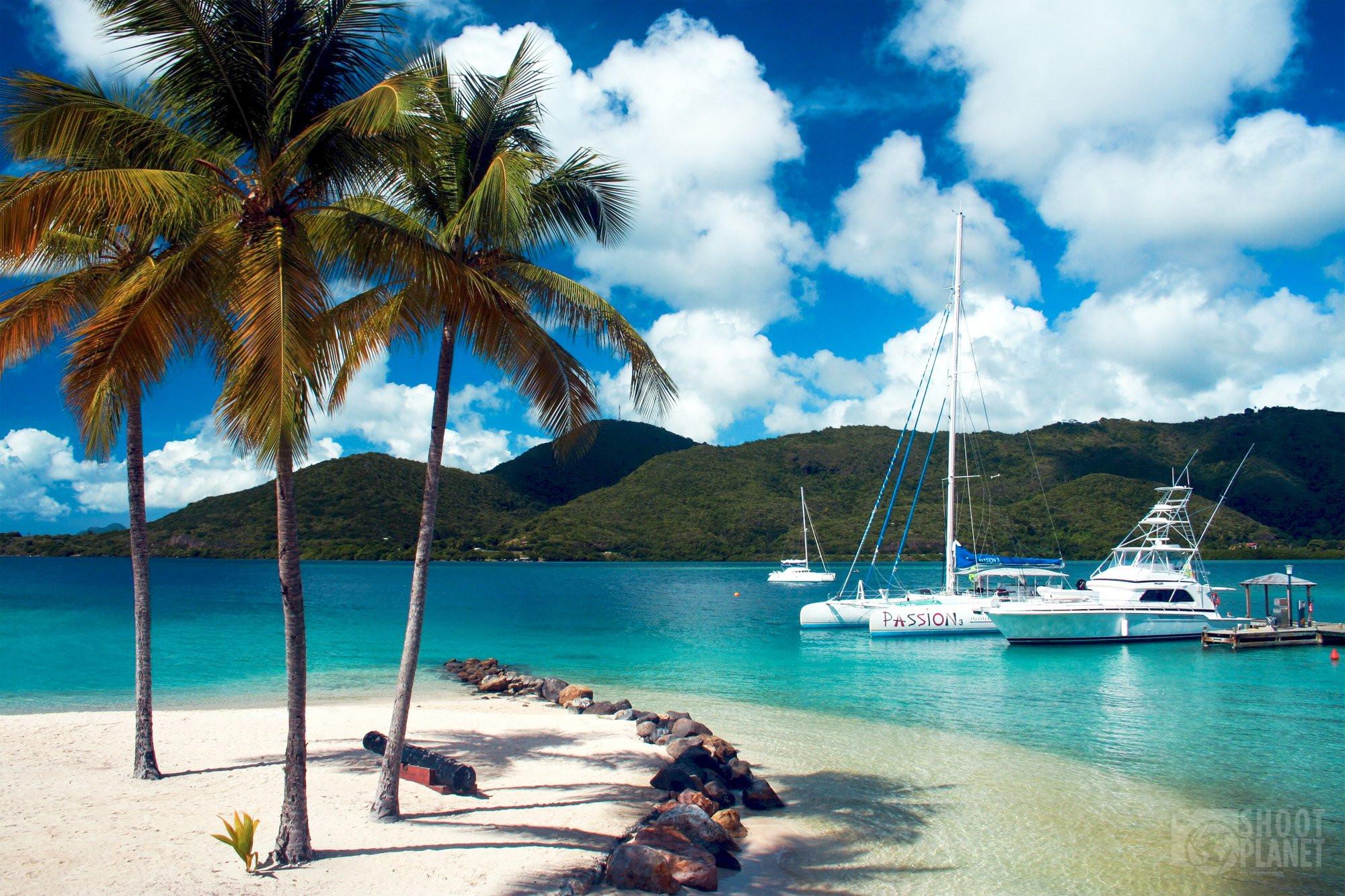 Coconut beach and sailboats, Martinique Caribbean Isl