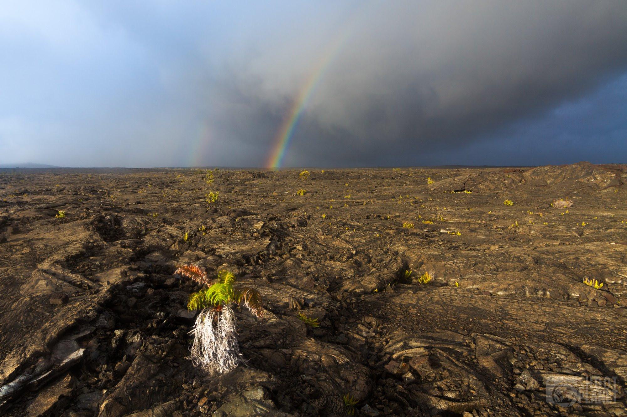 Rainbow above lava rocks, Hawaii Big Island