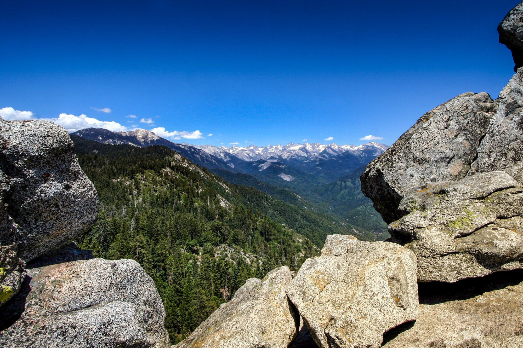 Sequoia National Park panorama, California USA