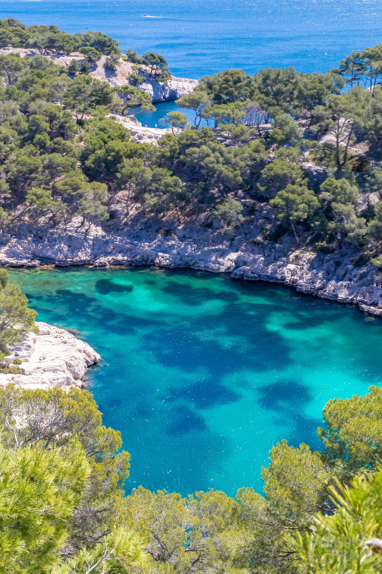Port-Pin Calanque aerial view, Azure coast France