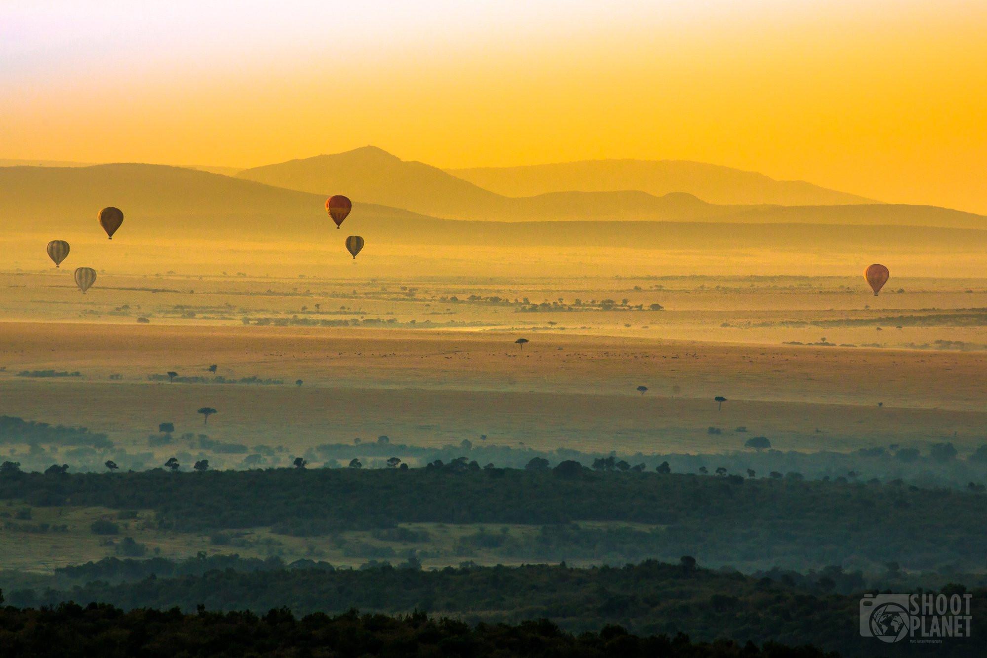 Hot air balloons over the savanna, Serengeti Tanzania