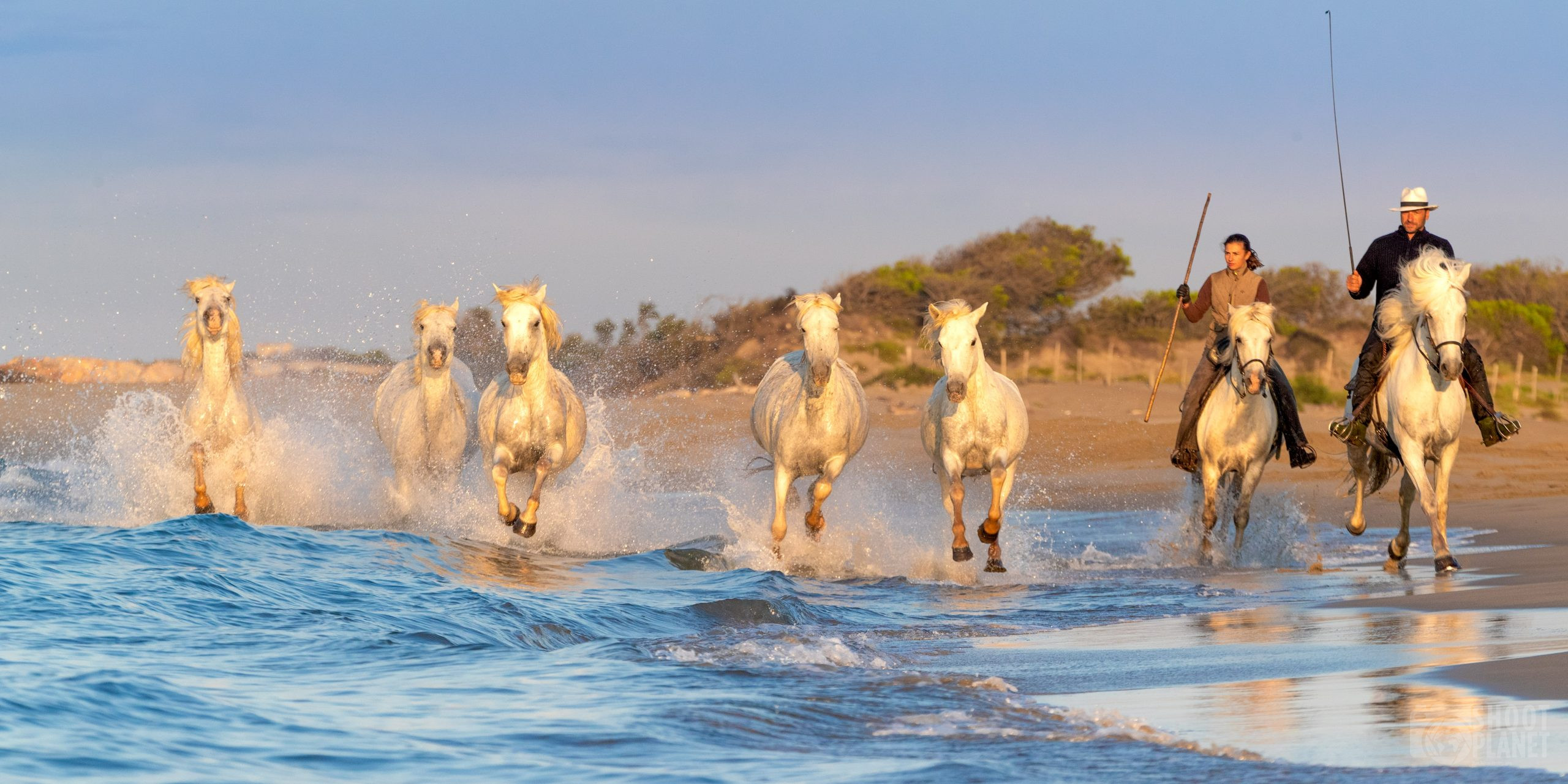 Guardians and horses on a Camargue beach, France